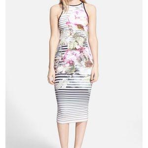 Ted Baker Laya Peony Stripe Midi Dress Size 1/XS
